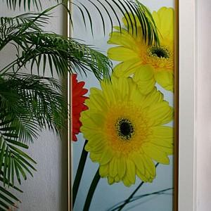 Iebūvējamās bīdāmās durvis